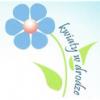 kwiaty_w_drodze